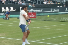 Fernando Verdasco hits a backhand return