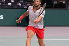 Fernando Verdasco anticipates a volley