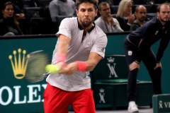 Fernando Verdasco backhand
