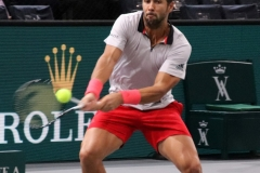 Fernando Verdasco backhand shot