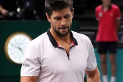 Fernando Verdasco in between games