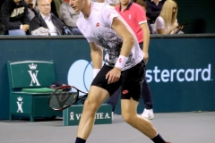 Kevin Anderson after an opponent's missed serve