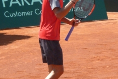 Lukas Rosol celebrates an important point